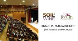 Presentation of the first results of the Soil4Wine LIFE + project at ENOFORUM 2019