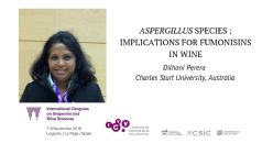Aspergillus species associated with wine grapes in Australia: Implications for fumonisins in wine