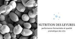 Nutrition des levures: une opportunité pour influer sur l'aromatique des vins ?