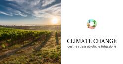 Vigneto, la sfida del climate change