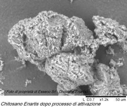 Il chitosano attivato come bioregolatore selettivo: Enartis Stab MicroM