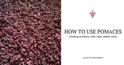 New uses for winemaking by-products