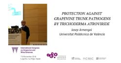 Protection against fungal grapevine trunk pathogens by Trichoderma atroviride SC1 treatments from nursery to the vineyard: a three-year study