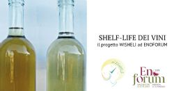 Migliorare la shelf-life dei vini
