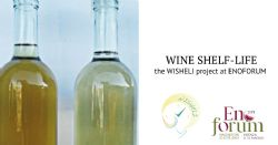 Improve the wine shelf-life – the WISHELI project at ENOFORUM congress