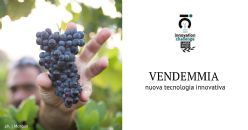 Vendemmiatrici trainate Grapes' Line