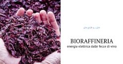 BIOVALE – Wine Waste Integrated Biorefinery