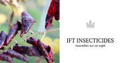 Réduire les IFT insecticides en vigne ?