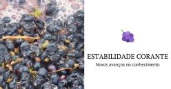 Novos avanços no conhecimento da estabilidade corante do vinho tinto