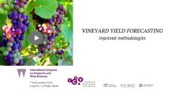 Improved methodology for early and accurate vineyard yield forecasting