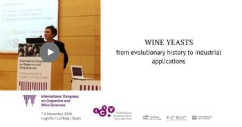 Wine yeasts: from evolutionary history to industrial applications