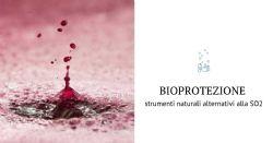 Riduzione dei solfiti: bioprotezione e alternative