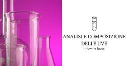 Analisi e composizione delle uve Infowine focus