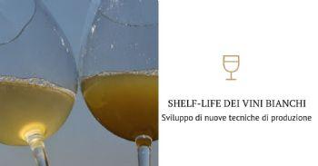 Cosa chiede oggi il mercato ad un vino bianco? Quali sono le conseguenze tecniche?