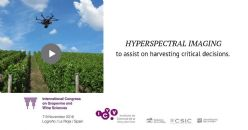 Wine grape quality assessment using hyperspectral imaging – a predictive analytics comparison framework