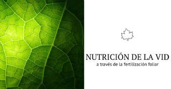 Fertilización foliar y aroma del vino