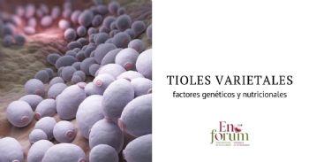 Liberación de tioles en fermentación: factores genéticos y nutricionales