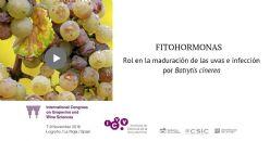 Rol de las fitohormonas durante la maduración de la uva y la infección con Botrytis cinerea