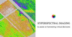 Wine grape ripeness assessment using Hyperspectral imaging