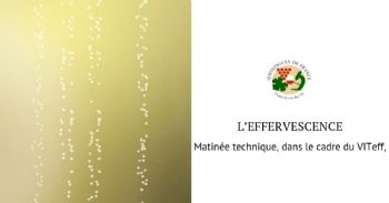 Matinée technique des œnologues de Champagne: L'effervescence dans tous les sens