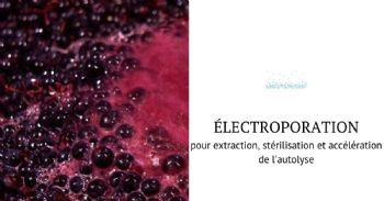 Champs électriques pulsés, une technologie innovante au service de la vinification