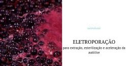 Campos elétricos pulsados, uma tecnologia inovadora ao serviço da vinificação