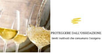 Specifico lievito inattivo per proteggere il vino dai fenomeni ossidativi