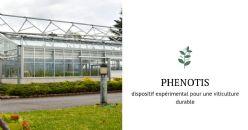 L'Inra inaugure Phenotis : un dispositif expérimental pour une viticulture durable de qualité