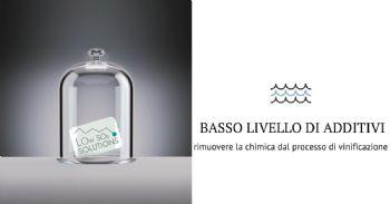 Strategie naturali per la riduzione dell'impiego delle sostanze chimiche durante la vinificazione