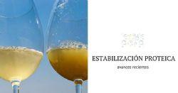 Novas tecnologias para a estabilização proteica do vinho