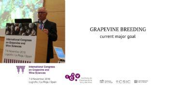 Mejora genética de la vid: estado actual y perspectivas futuras