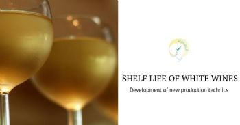 Development of new production technics to improve the shelf life of white wines