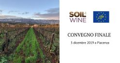 Innovative approach to soil management in the vineyard landscape