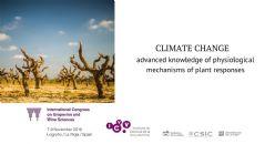 ¿Cómo puede contribuir la fisiología de la vid a una producción de vino sostenible en una situación de cambio climático?
