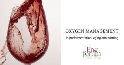 Le vin et l'oxygène du raisin au verre