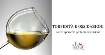 Nuovo dispositivo per la stabilizzazione in flusso continuo del vino bianco