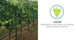 Il progetto ADAM - ADAttamento al cambio climatico con irrigazione Multifunzionale per la viticoltura