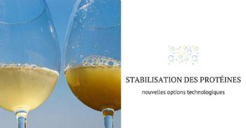 Nouvelles technologies pour la stabilisation des protéines du vin