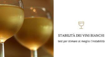 Tecniche analitiche combinate per lo studio della stabilità dei vini bianchi