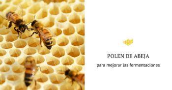 Estudian cómo el polen puede ayudar a mejorar la fermentación alcohólica del vino