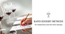 Rapid sensory profiling methods for wine : workflow optimisation for research and industry applications