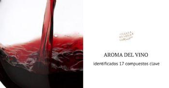 Identifican 17 compuestos clave del aroma del vino