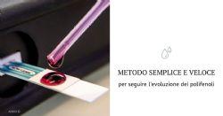 Metodo elettrochimico per la misurazione in tempo reale dei polifenoli durante la vinificazione