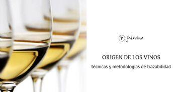 Desarrollo de modelos de predicción de origen en vinos de denominaciones de origen gallegas