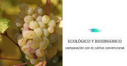 Experiencias del manejo ecológico y biodinámico de Riesling y Pinot Blanco en Trentino (Italia)