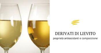 Relazione tra composizione e proprietà antiossidanti di derivati di lievito commerciali