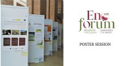 Poster submission at Enoforum 2020