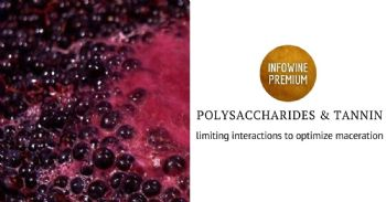 Enological approaches for the limitation of the cell wall polysaccharides-tannin interactions