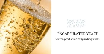 Novel microencapsulated yeast for the production of sparkling wine by traditional method