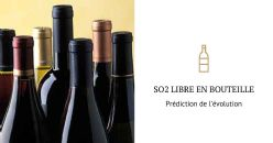 Prédiction de l'évolution de la concentration de sulfites post embouteillage et durée de vie du vin